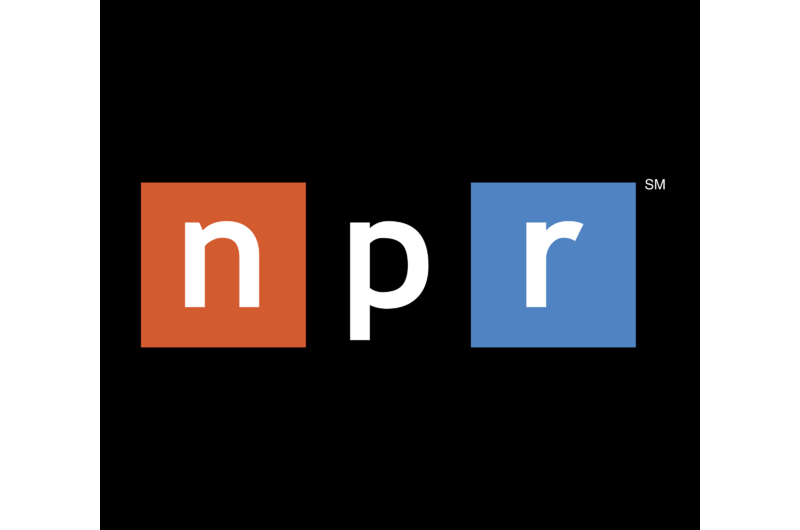 NPR INTERVIEW: White Skin, Black Emojis
